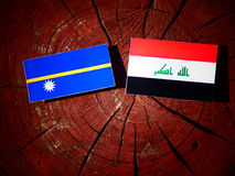 Nauru flag with Iraqi flag on a tree stump isolated Stock Images