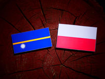 Nauru flag with Polish flag on a tree stump isolated. Nauru flag with Polish flag on a tree stump royalty free illustration