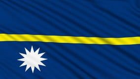 Nauru Flag. royalty free illustration