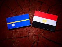 Nauru flaga z egipcjanin flaga na drzewnym fiszorku Zdjęcie Stock