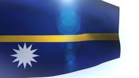 Nauruan flag blowing in the wind waving wave stock video