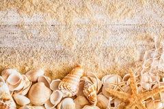 Nautical background and border of seashells Stock Photography