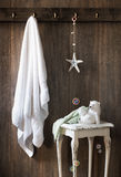 Nautical Bathroom Royalty Free Stock Images