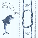 Nautical card with frame, marine knots, ropes, dolphins and fish Royalty Free Stock Photos