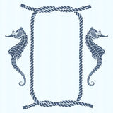 Nautical card with frame, marine knots, ropes  and  seahorse. Ve Stock Photos