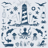 Nautical clip art set with whales, sharks, dolphins, fish and co. Big vector set with marine creatures and nautical objects: seagulls, sharks, fish, octopus Stock Photos
