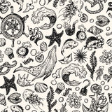 Nautical collection. Pattern. Stock Images