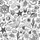 Nautical collection. Pattern Stock Photography