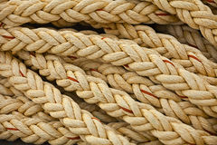 Nautical knots. Big marine vintage sea ropes in heap background Stock Image