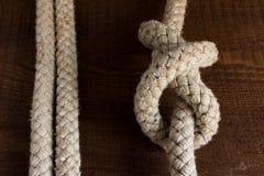Nautical knots Stock Image