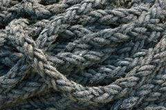 Nautical rope texture Stock Image