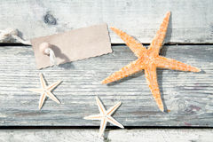 Nautical starfish background Royalty Free Stock Image