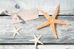 Nautical starfish background Royalty Free Stock Image