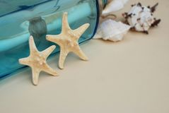 Nautical Theme Backdrop, Decorative Starfish on Neutral Ivory Background. Place for text. Selective focus. Nautical Theme Backdrop, Decorative Starfish on Stock Photo