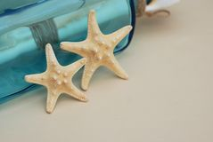 Nautical Theme Backdrop, Decorative Starfish on Neutral Ivory Background. Place for text. Selective focus. Stock Images