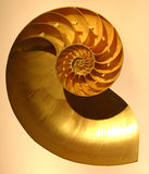 Nautilus. A cross section of a nautilus shell, a good example of the Divine Proportion equation that is found repeatedly in nature and believed to be the basis Stock Photography