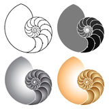 Nautilus. Vector illustration of a nautilus. Different variations Royalty Free Stock Photography