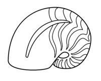 Nautilus - animale di mare, mollusco Le coperture di nautilus hanno barrato le coperture - lineari, vettore illustrazione di stock