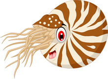 Nautilus Cartoon for you design Royalty Free Stock Images