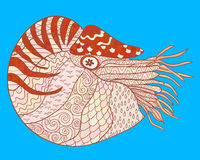 Nautilus with high details. Royalty Free Stock Images