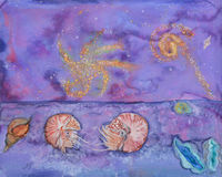 Nautilus molluscs and starry night Stock Images