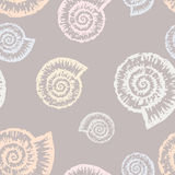 Nautilus of pattern Stock Photos