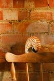 Nautilus sea shell in retro style Royalty Free Stock Photos