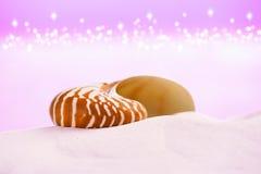 Nautilus sea shell on white sand with festive glitter Stock Photo