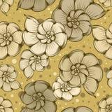 Nautilus shells pattern Stock Photos