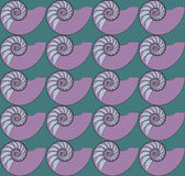 Nautilus Pattern Stock Photography