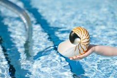 Nautilussnäckskal i barnhänder med den crystal backgroen för blått vatten Royaltyfri Bild