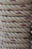 Nautiska rep som binds runt om den wood bakgrunden royaltyfria foton