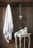 Nautiskt badrum Royaltyfria Bilder