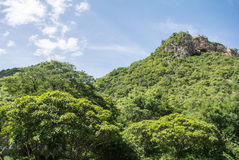 Nautural forests. Natural forests and beautiful mountains in countryside Ratchaburi Thailand Royalty Free Stock Photo