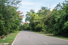 Nautural forests. Natural forests and beautiful mountains in countryside Ratchaburi Thailand Royalty Free Stock Photography