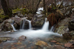 Nauwe vallei Nevis - Schotland Stock Afbeeldingen
