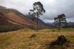 Nauwe vallei Nevis - Schotland Royalty-vrije Stock Afbeeldingen