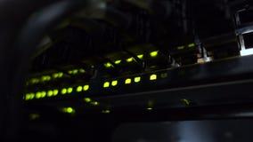 Nav för Ethernetnätverksanslutning Blinkaljus i en mörk server hyr rum, närbilden stock video