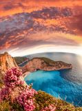 Navagio beach with shipwreck and flowers on Zakynthos island, Greece royalty free stock image