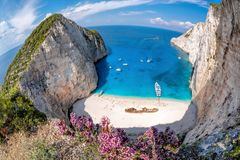 Navagio beach with shipwreck and flowers on Zakynthos island, Greece stock image