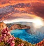 Navagio plaża z shipwreck i kwiatami na Zakynthos wyspie, Grecja zdjęcia royalty free