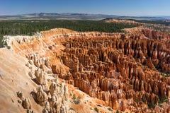 Navajoögla Bryce Canyon National Park Utah USA Arkivbilder