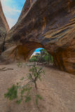 Navajo łuk Obraz Stock