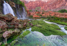 Navajo-Fälle Stockbild