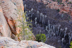 Navajo National Monument Royalty Free Stock Photo