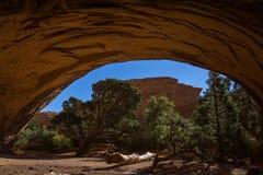 Navajobåge Fotografering för Bildbyråer