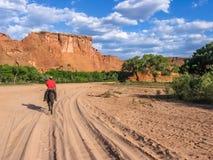 Navajoindiern rider i dalen av Kanjon de Chelly Fotografering för Bildbyråer
