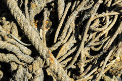 Naval Rope Royalty Free Stock Images