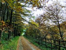 Navarrapar l'intermédiaire de chemin de Verde Plazaola photos stock