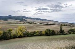Navarra's fields Royalty Free Stock Photos